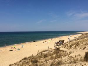 CLUB MARINA-LANDES - Photo 530