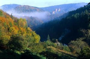 Camping Seasonova Les Vosges du Nord - Photo 1110