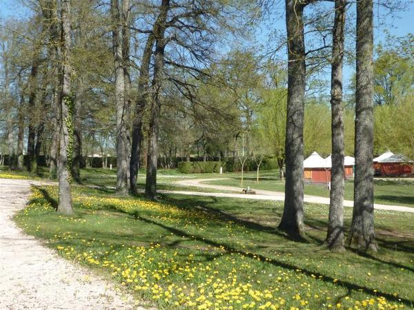 Camping LE BOIS DE SOPHIE - Photo 105