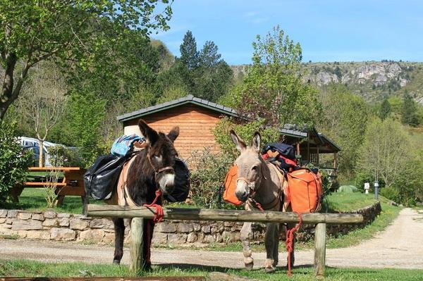 Camping La Cascade - Photo 168