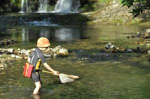 Camping La Cascade - Photo 469