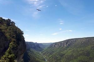 Camping La Cascade - Photo 1185