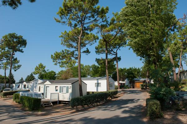 Camping le Tropicana - Photo 105
