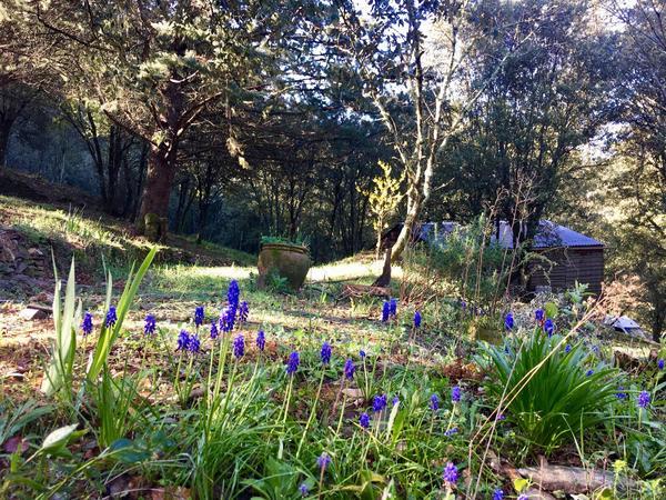 Camping La Corconne - Photo 104