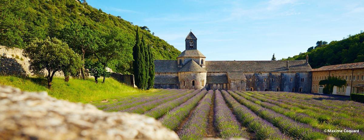 Camping La Pinède en Provence - Photo 1306