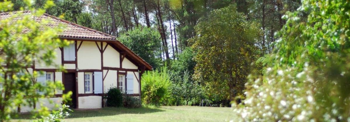 Village les Pins d'Or - Photo 1228