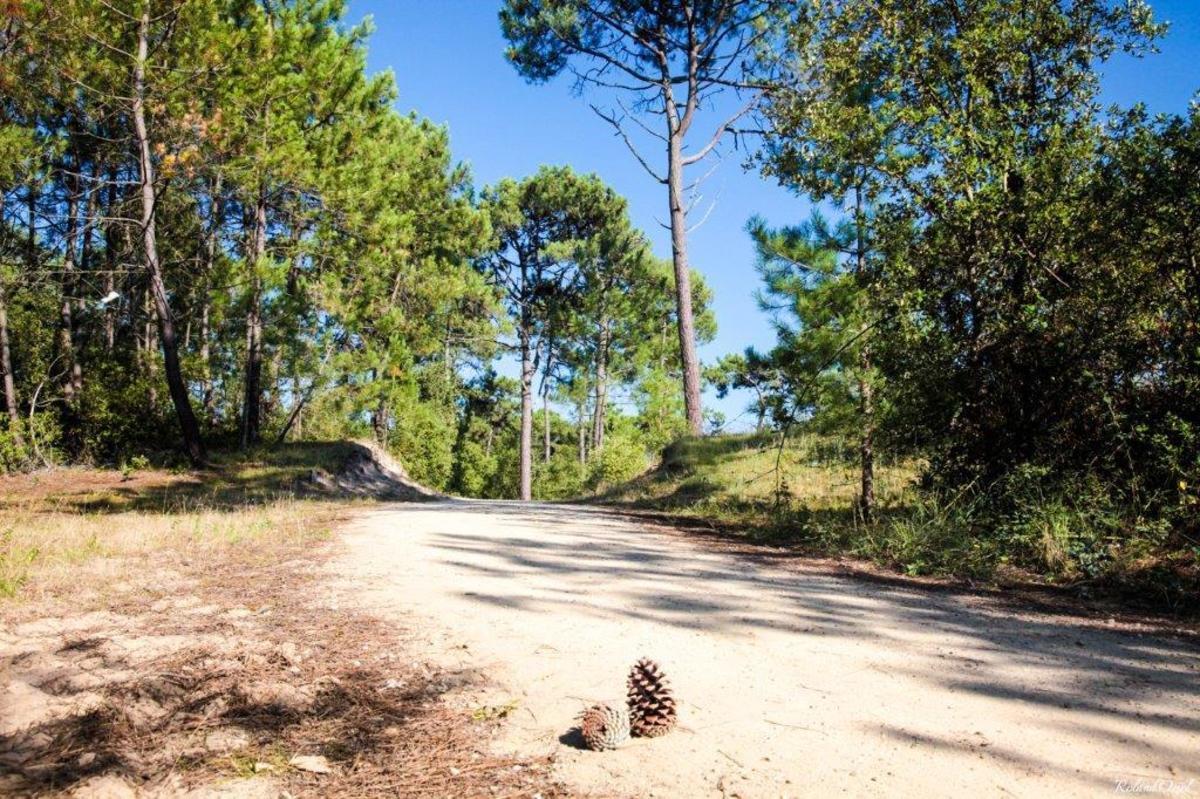 Camping Le Bois Joly - Photo 29