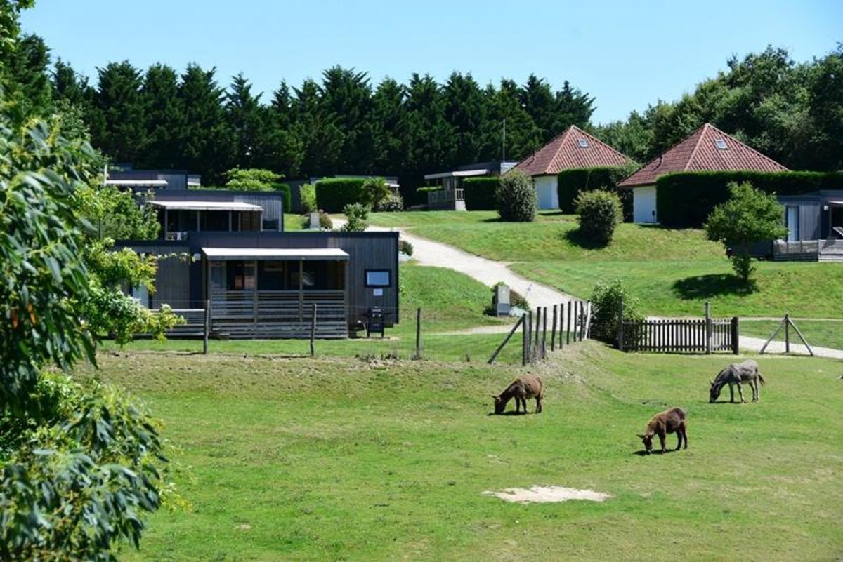 Camping Village de La Guyonnière - Photo 175