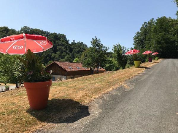 Camping La Chatonnière - Photo 1101