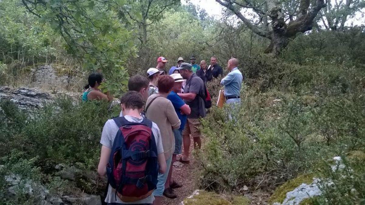 Camping Castanhada - Photo 4107