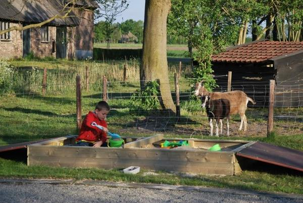 Camping De Toffe Peer - Photo 1110