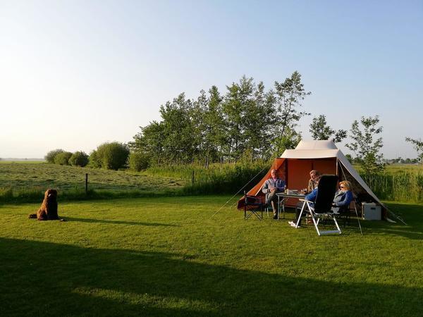 Camping De Toffe Peer - Photo 1104