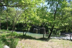 Ludo Camping - Photo 2201