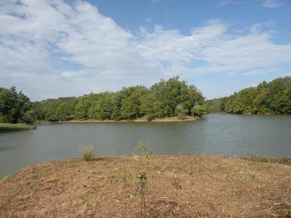 Domaine les Lacs d'Armagnac - Photo 1105