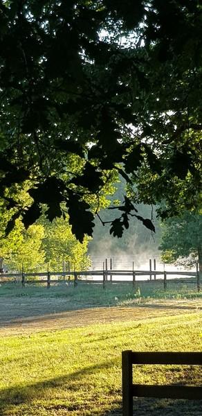 Domaine les Lacs d'Armagnac - Photo 1108