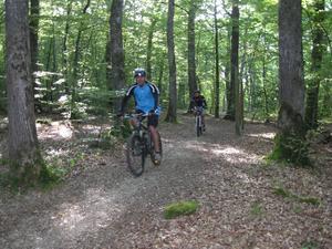 Camping Porte des Vosges - Photo 4202