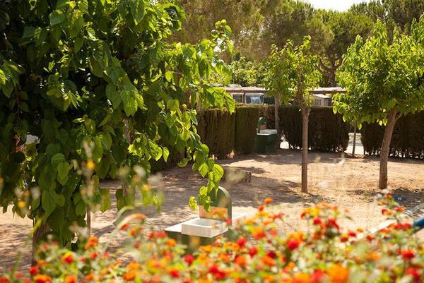 Stel Camping & Bungalow Resort - Photo 1109