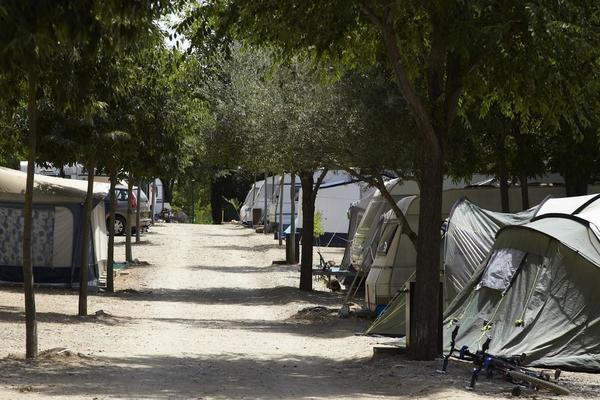 Camping Vell Emporda - Photo 1103