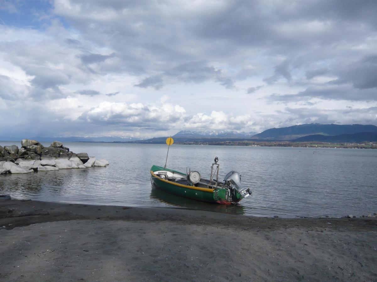 Camping La Pourvoirie des Ellandes - Photo 4101